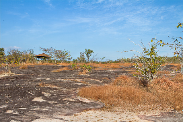 Landscape of bare stone and dry grass: Pha Taem NP
