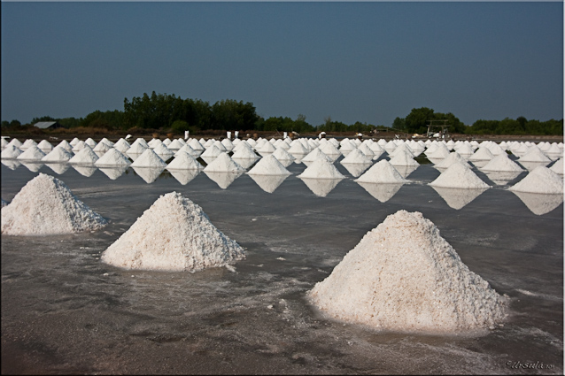 Piles of salt in the sunshine