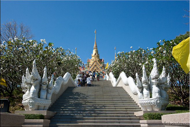 The wide naga staircase up to Wat Thang Sai