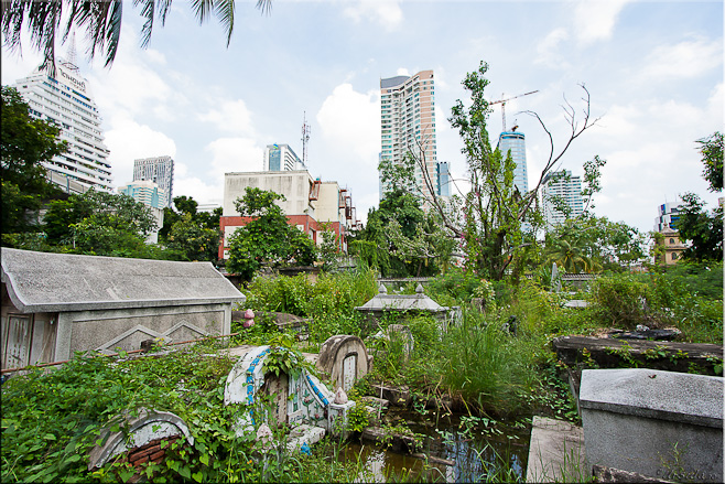 Water, weeds and ruined graved ~ Bangkok high-rises in the background.