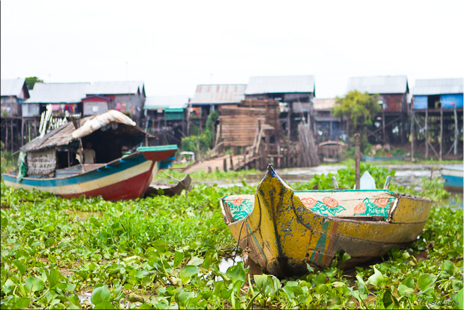 Colourful wooden boats, with bamboo and rattan housing behind