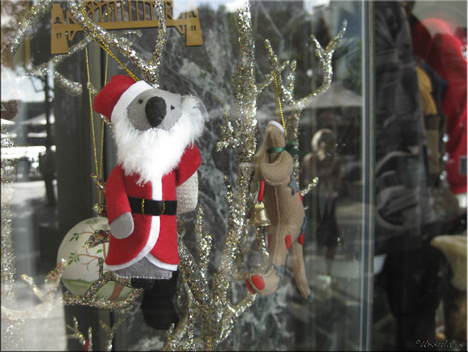Small felt koala in a santa suit on a tinsel tree + reflections in a shop window