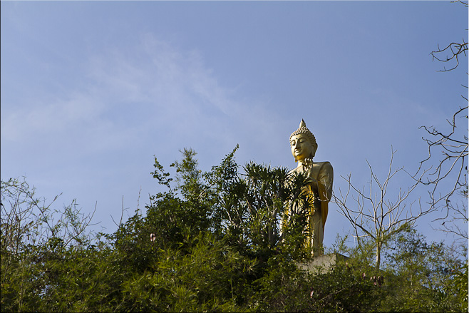 Golden standing buddha image behind jungle growth against a blue sky.