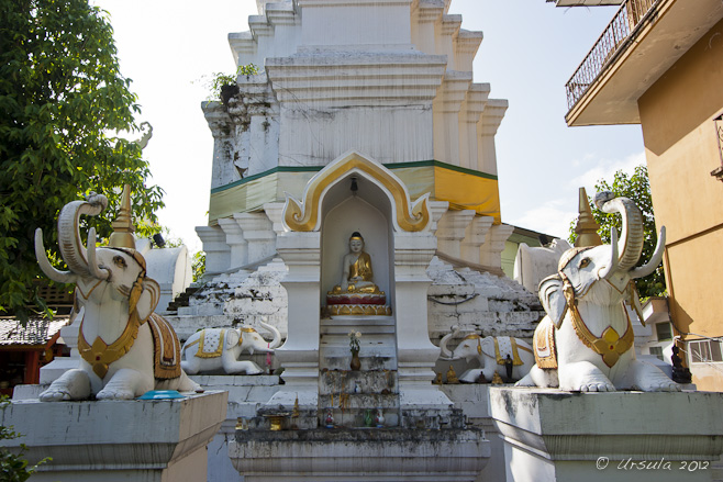 White and yellow chedi, white stone elephants in front, small buddha in an alcove