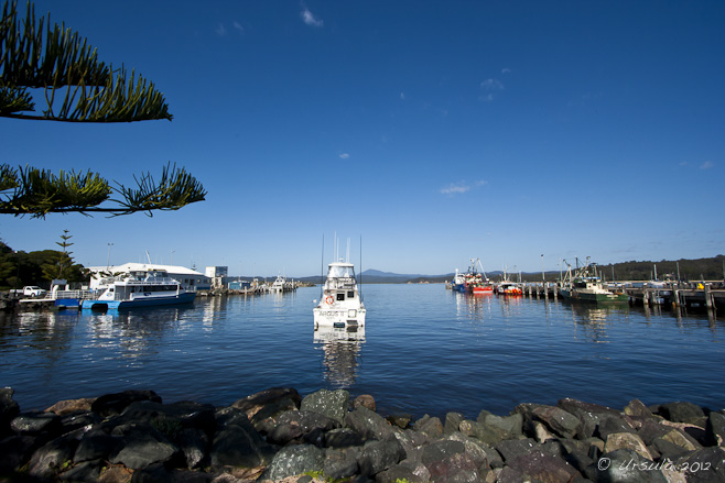 WIde-angle view of a calm harbour with recreational and fishing boats moored.