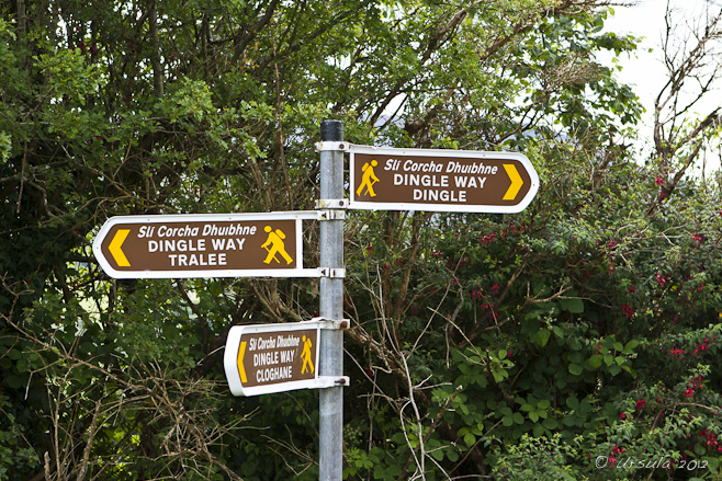Dingle Way walking sign posts: to Tralee, Dingle, Cloghane