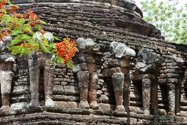 Carved elephants at the base of a laterite temple.