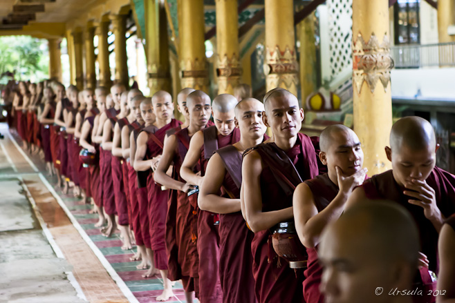 Burmese Theravada monks in a line-up: Kyakhatwine Monastery, Bago, Myanmar