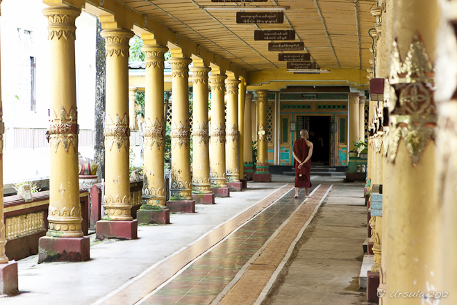 A lone monk walks down a quiet corridor, bounded by gold pillars. Kyahkatwine Monastery, Bago, Myanmar