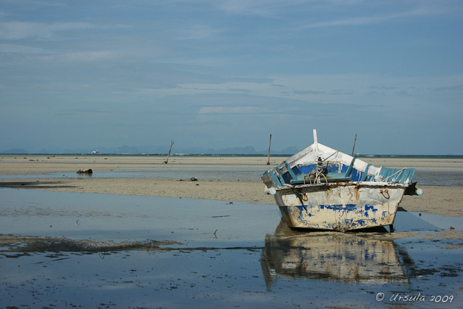 Roughly painted blue and white row boat on a flat wet beach.