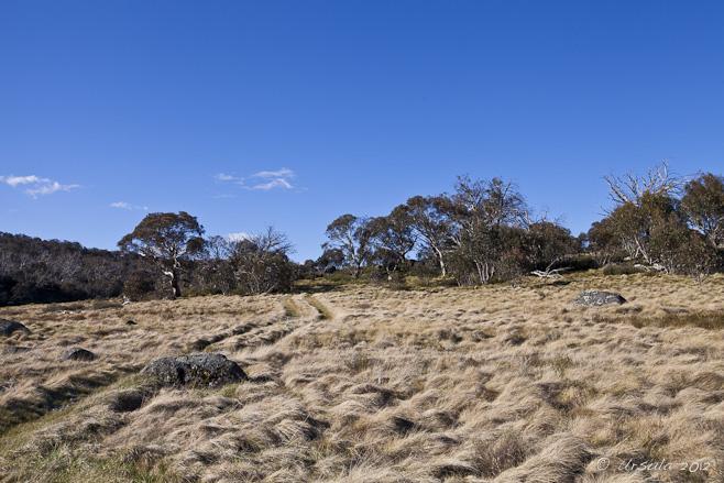 Grassy Flats, Rennix Gap