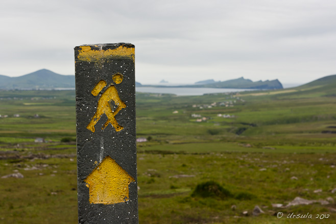 "Yellow ""Walking Man"" on a black signpost, on Mt Brandon, overlooking Smerwick Harbour, Ireland."
