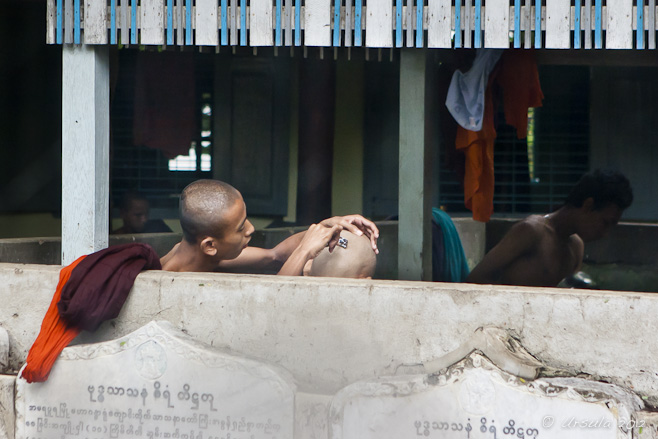 View of young monks behind a half wall: one shaving the other
