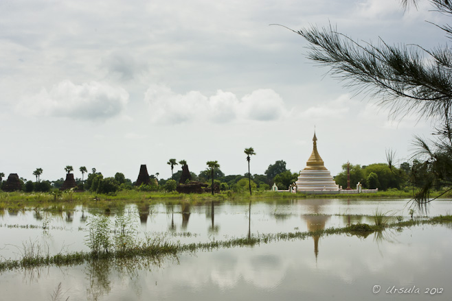 A white burmese Chedi under a white sky, reflected in flooded Rice patties, Inwa Island, Myanmar