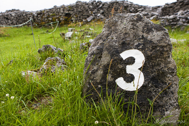 "A rock painted with a number ""3"" on the wet grass at Caherconnell Stone Fort, Co Clare, Ireland."