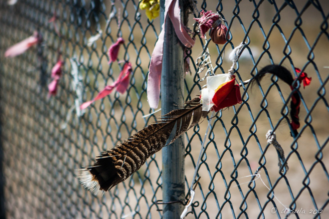 Feathers and ribbons on a wire mesh fence, Wounded Knee, South Dakota, USA
