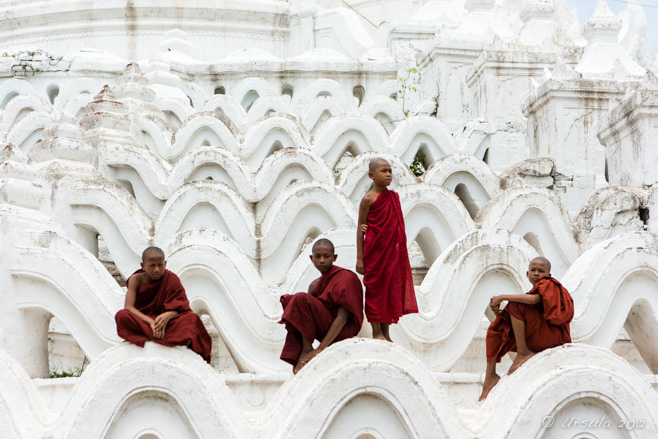 Four young novice monks on the white terraces of Hsinbyume Pagoda, Mingun, Myanmar.