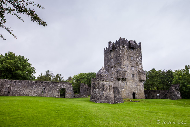 Aughnanure Castle tower in the middle of a wet green lawn, Co Galway