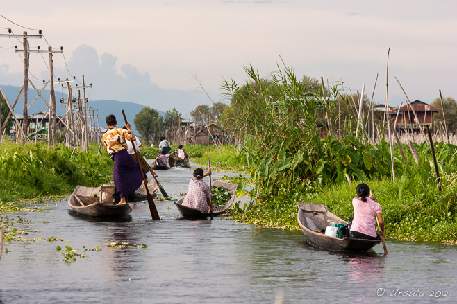 Leg Rowers and Paddlers on Inle Lake, Myanmar