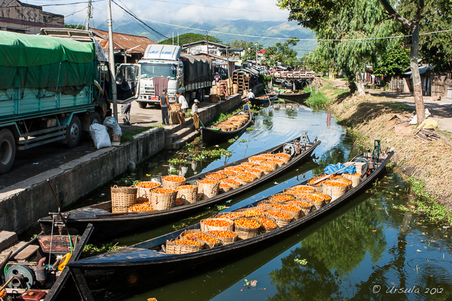 Tomatoes in baskets in boats, Nyaung Shwe, Myanmar