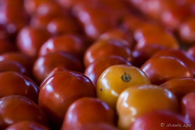 Close-up: Tomatoes, Nyaung Shwe, Myanmar