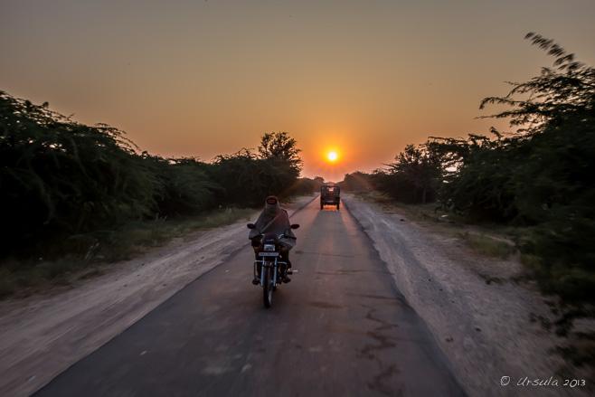 Opium for Breakfast – Bishnoi Village, Rajasthan, India