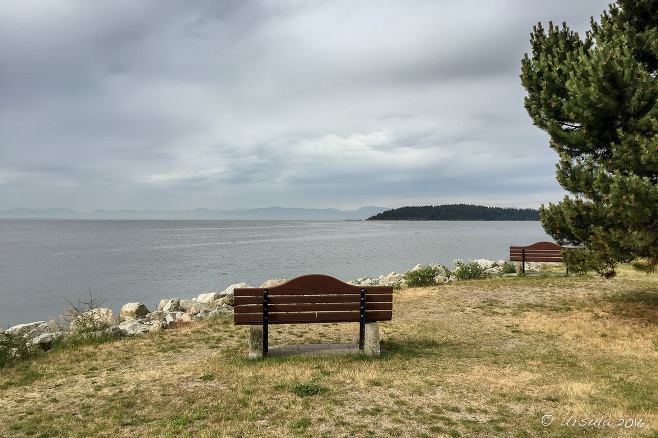 Wooden Bench overlooking the water, Sechelt BC Canada