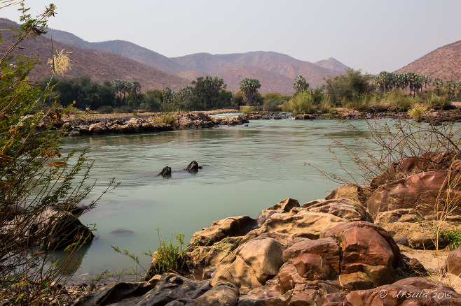 Landscape: Looking over the Kunene River above Epupa Falls, Namibia