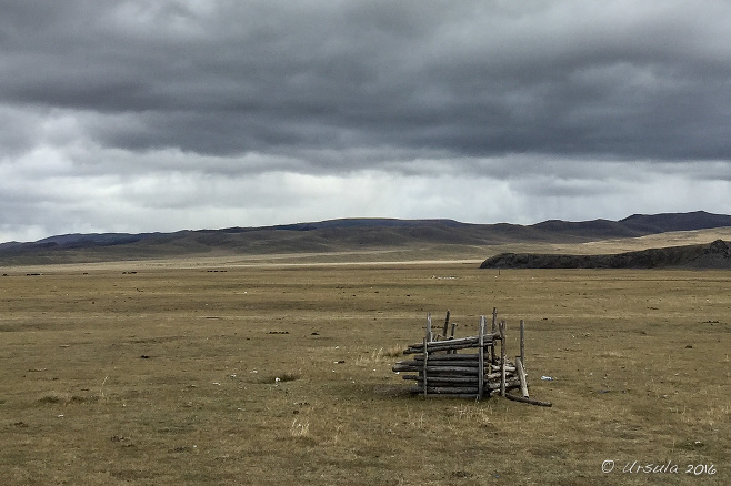 Three-sided rough wooden shelter on a grassy plain, Mongolia