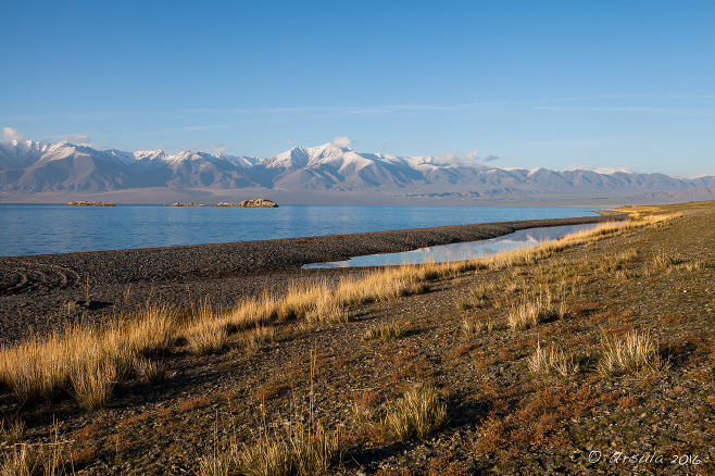 Uureg Lake Foreshore, Altai Mountains, Uvs Mongolia