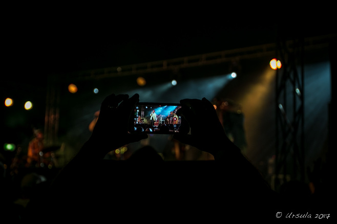 Hanks holding a smart phone in a dark tent, videoing the California Honeydrops, Bluesfest Byron Bay AU