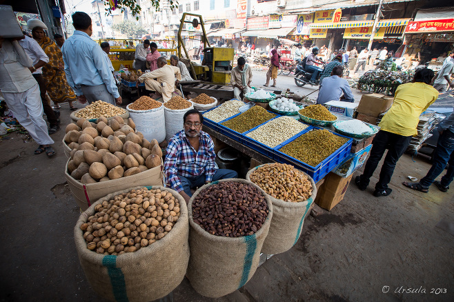 A Man surrounded by bags of spices, Chandni Chowk, Old Delhi India