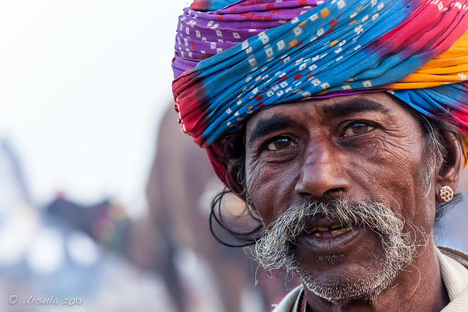 Indian man in a colourful turban, Pushkar, Rajasthan