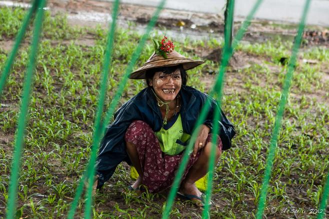 Portrait: Burmese woman gardener, Yangon, Myanmar
